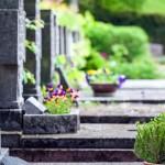 grave care grave